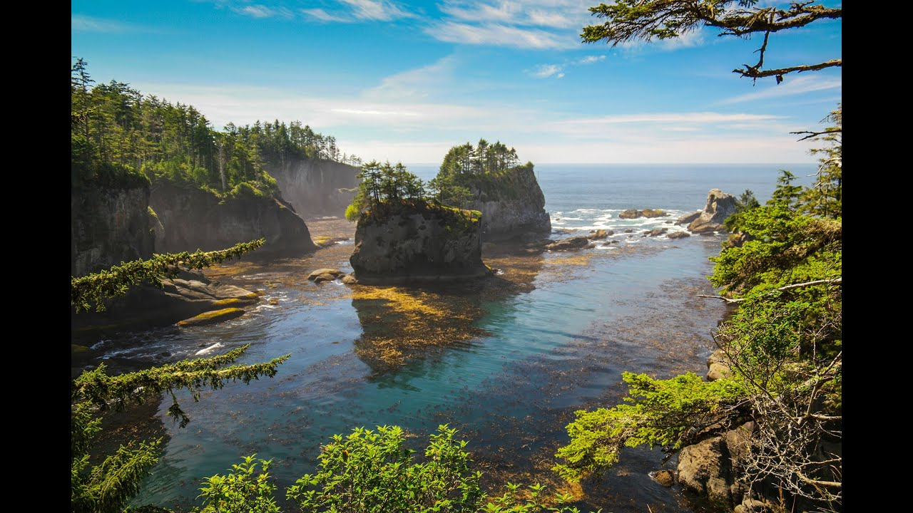 olympic national park photography guide