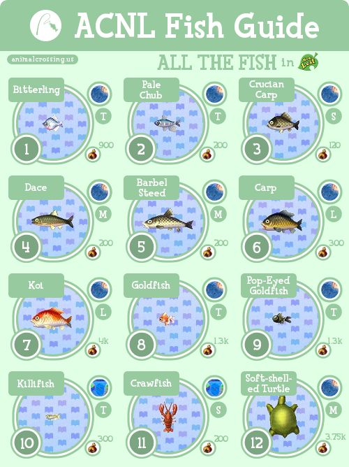 animal crossing new leaf guide complet