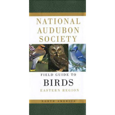 sibley guide to birds of eastern north america